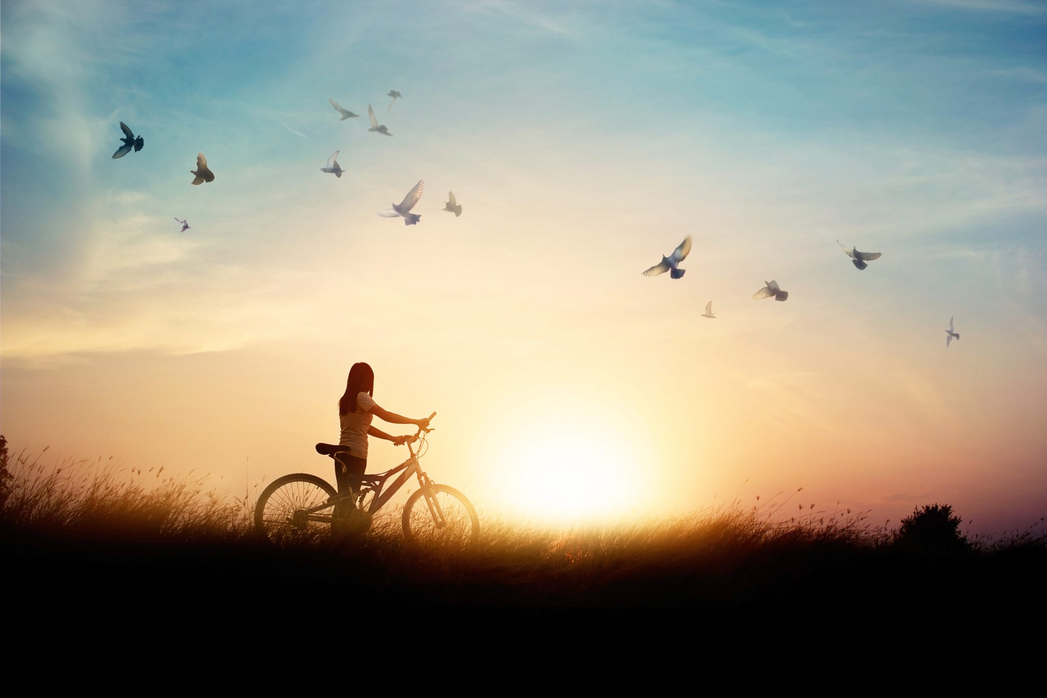 Lonely woman standing with bicycle on road of paddy field among flying birds and sunset background